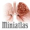 Miniatlas COPD