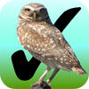 Birdwatcher's Diary - Stevens Creek Software
